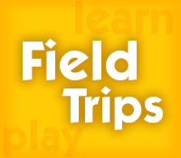 Hold your schools Field Trip at Pump It Up